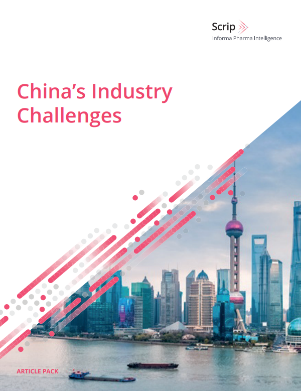 China's Industry Challenges Front Cover