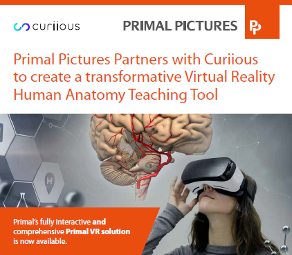 primal pictures vr press release